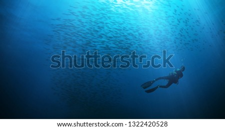 Man scuba diver silhouette with flock of fish. Underwater sport and leasure activities.