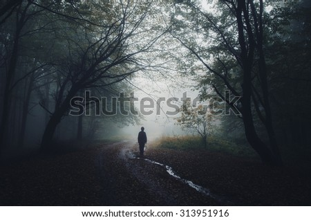 Stock Photo man silhouette at the edge of a dark forest