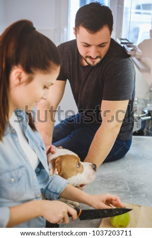 Stock Photo Man sitting on the kitchen countertop petting dog while girlfriend cutting apple