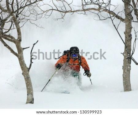 Man skiing through aspen trees in the Utah mountains, USA.