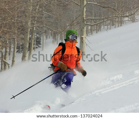 Man skiing with aspen trees in the background, Utah, USA.