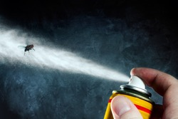 Man spraying on a fly a poisonous aerosol