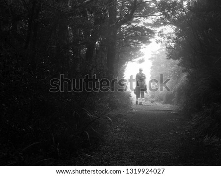 Man standing alone contemplating in the mysterious foggy forest in Tongariro National park