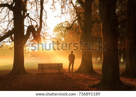 Man standing by a bench, enjoying a foggy, autumn morning in a park.