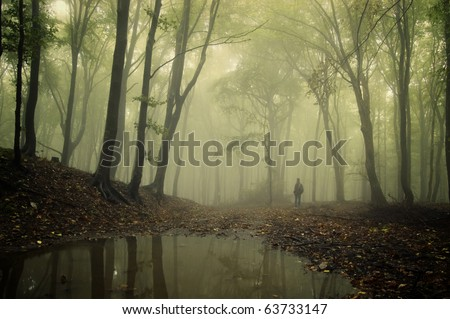 man standing in a green forest with fog and trees reflecting in water