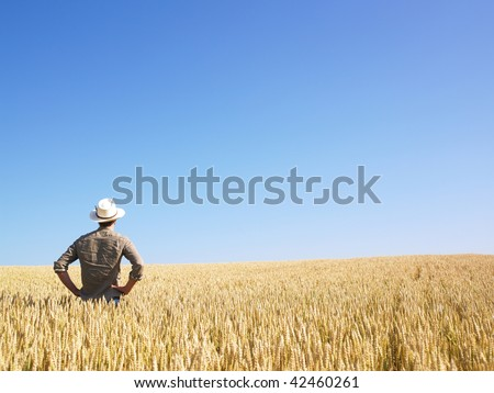 Man standing in wheat field. Horizontally framed shot.