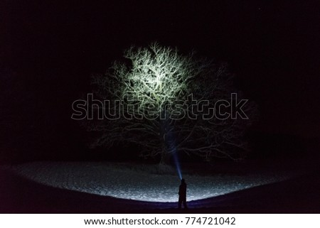 Man standing outdoors at night in Sweden Scandinavia winter landscape shining with flashlight at sky. Nice blue light beam. Beautiful, calm and peaceful abstract image. #774721042