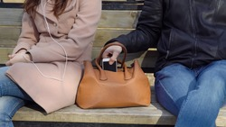 Man steals the phone from a woman's bag in the park.