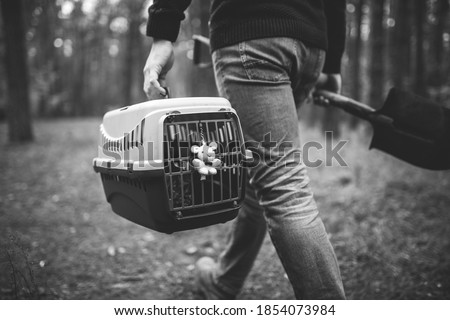 Man still in forest carrying transport box inside with dead pet and shovel for burying animal in wood. Loss of pet in fall. Male goes to make an illegal burial, grave for cat, back view. Death of pet. Foto stock ©