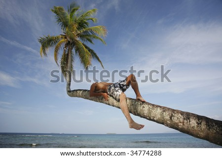 Man sunbathing on an overhanging coconut palm on a tropical beach