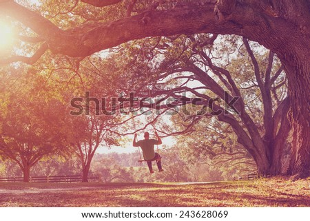 Man swinging from a large live oak tree branch in the countryside looking serene peaceful calm relaxing beautiful whimsical happy dreamy romantic with a retro vintage lens flare and light leak filter