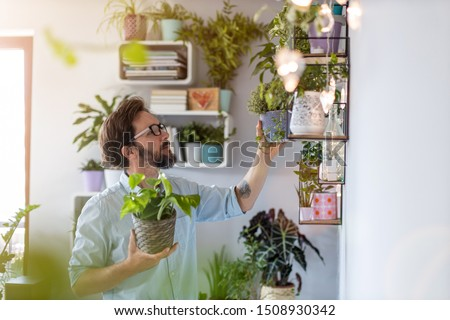 Man taking care of her potted plants at home