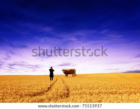 Man taking picture of cow