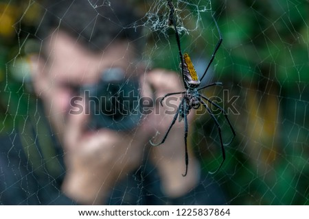 Man taking picture of spider