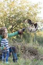 Man teaches boy the art of falconry with a hawk