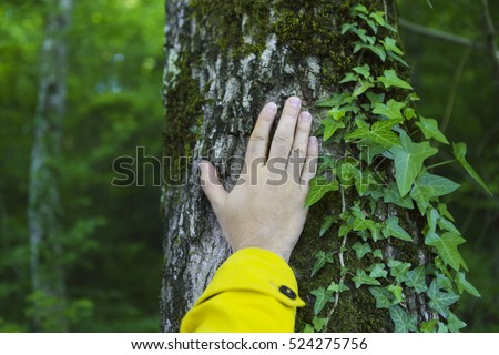 Man touching old tree. Wild nature and enviroment protection concept