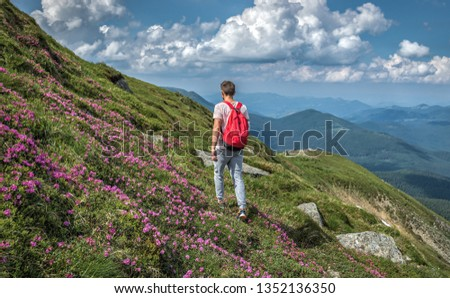 man traveler hike outdoor with backpack walks outside ascent in mountains , summer rue flowers