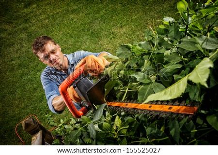 Man Trimming The Bushes Around His House.