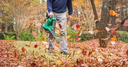Man using electric powered leaf blower to blow autumn leaves from grass lawn. Landscape worker clearing fall leaves from residential yard.