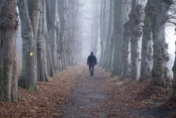 Man walking alone in the woods