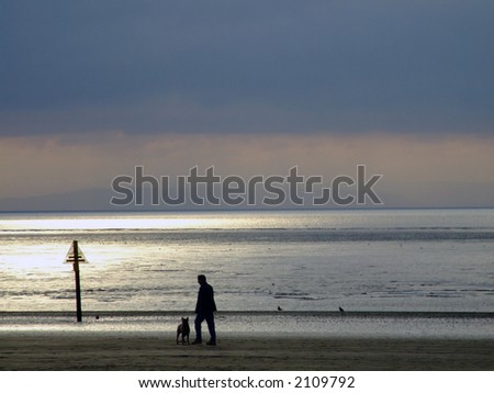 Man walking his dog on the beach