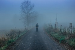 Man walking on scary misty road. Moody blue fog.Mystical fantasy Halloween atmosphere.Person walking to adventure.Horor like scenery.Dark moody landscape with pathway leading through.Mysterious park