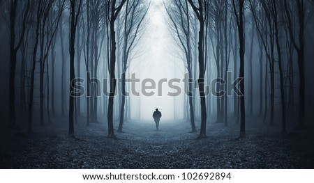 man walking through a fairytale forest