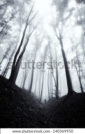 Stock Photo man walking through a huge dark forest with black trees