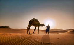 Man walking with camel in Morocco desert