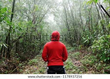 man wear red hoodie standing alone in front of hill forest path in hazy evening enjoy relaxing and calm moment in nature shot with focus on trees and plants in background for environment concept