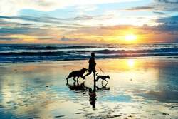 Man with a dogs running on the beach at sunset. Bali island, Indonesia
