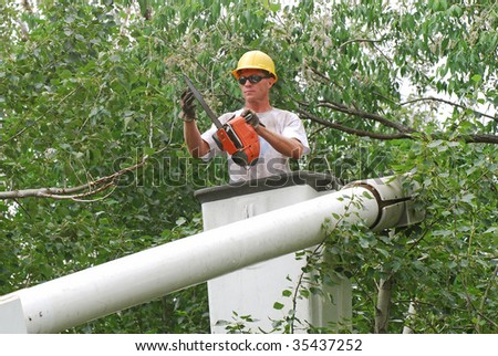 Man with hard hat and chainsaw getting ready to trim a tall tree branch.