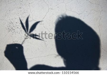 Man with marijuana weed leaf, shadow on the wall.