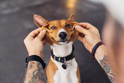 Man with tattooed arms and hipster fashion accessories plays with his dog and makes it smile with his hands so it looks cute and funny