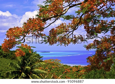Managaha Island and Tanapaq Lagoon through the Flame Trees, Saipan C.N.M.I...