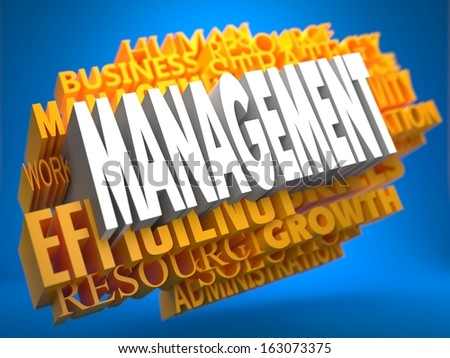 Management Word in White Color on Cloud of Yellow Words on Blue Background.