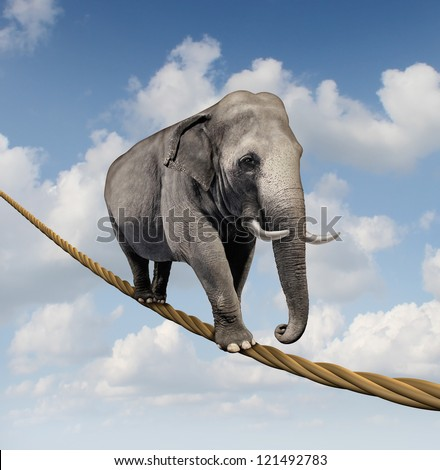 Managing risk and big business challenges and uncertainty with a large elephant walking on a dangerous rope high in the sky as a symbol of balance and overcoming fear for goal success.