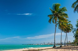 Manaira beach with coconut trees and people in the sun, in Joao Pessoa, Paraiba State, Brazil on January 23, 2009.