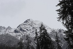 Manali mountain   Set among snow-secured mountains and thick woodlands, Manali is situated at the northern finish of the picturesque Kullu Valley. Situated at 13,050 feet (4,000 meters) above ocea