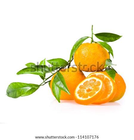 Orange Logo With Leaf Logo Quiz Orange Circle Logo With Leaf