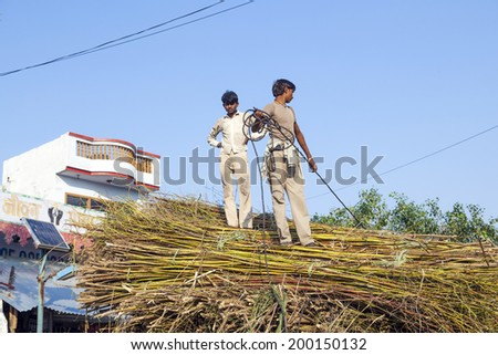 MANDAWA, INDIA - OCT 25, 2012: men load the straw on the tractor after harvest near Mandawa, India. India ranks second worldwide in farm output. 50 % of the population are involved in agriculture.