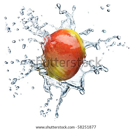 Mango in spray of water. Juicy mango with splash on white background