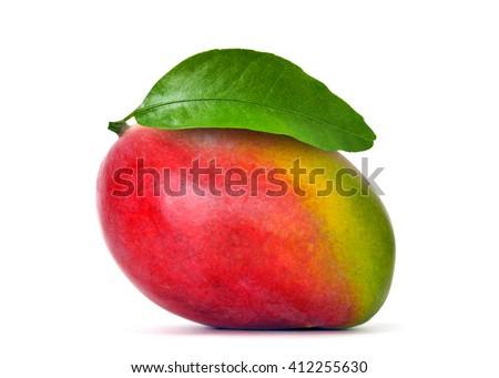 Mango isolated on white #412255630