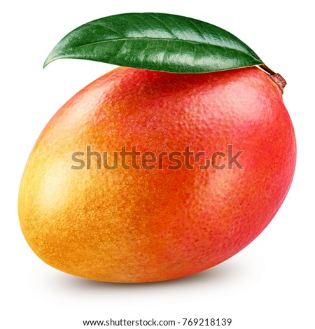 Mango leaf isolated on white background Clipping Path