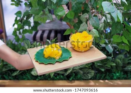 Mango pudding, manho slice in jelly, dessert and mango granita on wood plate. Selective focus. Foto stock ©
