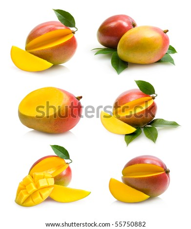 mangoes collection