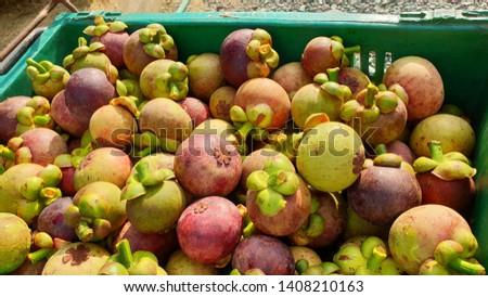 mangosteen fruit tropical fruit  queen of fruit