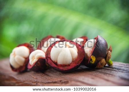 mangosteen in a cut close up. Asian exotic fruits #1039002016
