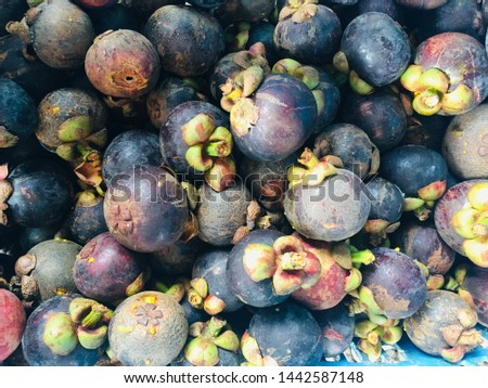 Mangosteen is a tropical evergreen tree with edible fruit  #1442587148