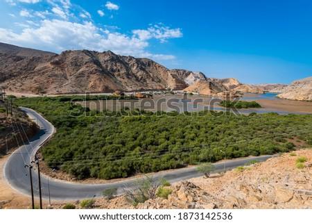 Mangrove forest from bander Al Khairan, Sultanate of Oman, Muscat. Zdjęcia stock ©